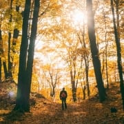 Hiker standing in autumn forest photo by Aaron Burden on Unsplash